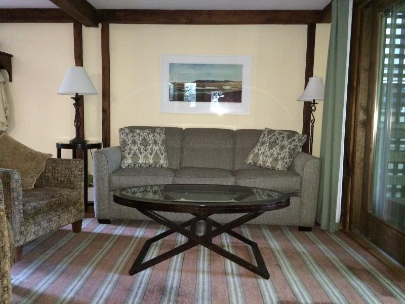Living Room - Gorgeous remodeled 2BR abuts conservation land - Provincetown - rentals