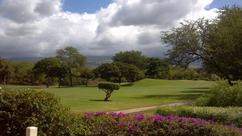 Beautiful Mountain and Golf Course Views - 2 Bedroom with Amazing Golf Course & Mountain View - Wailea-Makena - rentals