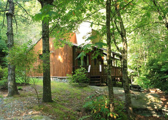 Andrea's Creek 1 creekside cabin on the rocks, hot tub, sleeps 4 - Image 1 - Boone - rentals