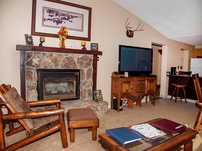 Bronze Tree 607 - Image 1 - Steamboat Springs - rentals