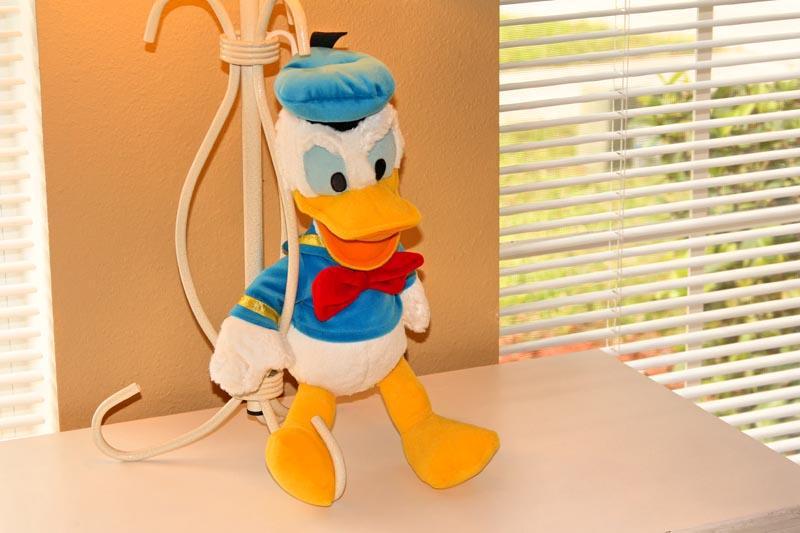 Donald's Disney Den - Donald's Disney Den - Four Corners - rentals