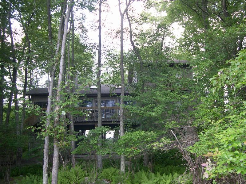 View of house from lake - Beautiful pet friendly house on Lake Natalie - Gouldsboro - rentals