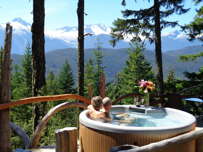 Clothing is optional! - Cabin&Hot-tub Stunning Views Vancouver/Whistler BC - Brackendale - rentals