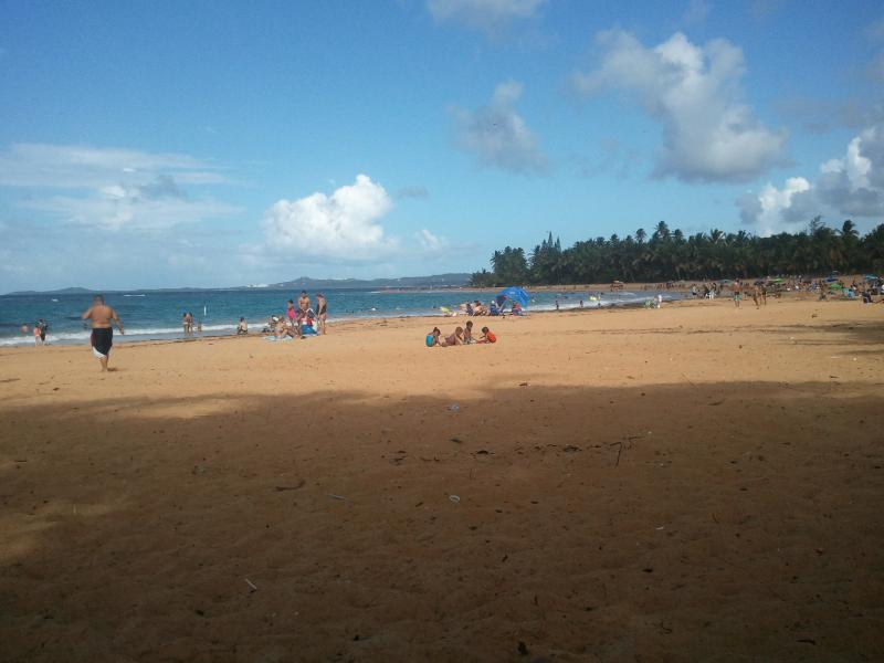 Cozy Breeze Condo - Image 1 - Luquillo - rentals