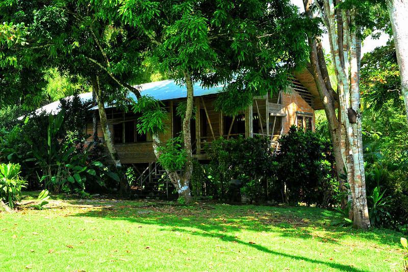 Casa Linda - SUP Surfers Dream Beach House - Image 1 - Cabo Matapalo - rentals