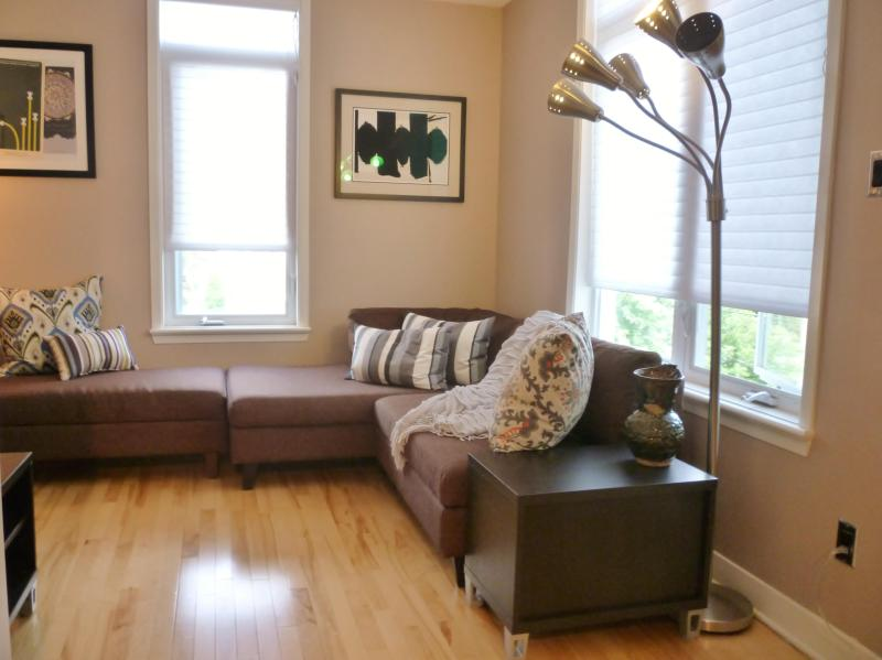 Bright living room with flat screen tv - Haven in Ottawa - Ottawa - rentals