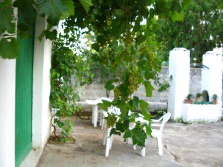 Casetta Carya - Sirgole - Front Garden - Casetta Carya - Sirgole - Life's little pleasures - Cutrofiano - rentals