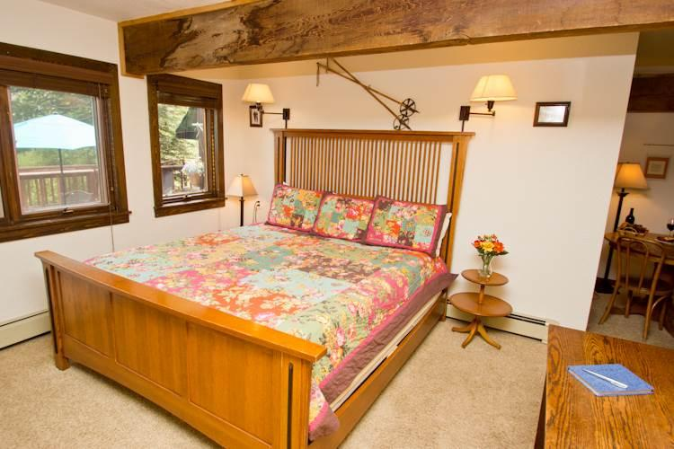 Manitou Lodge #4 - Image 1 - Telluride - rentals