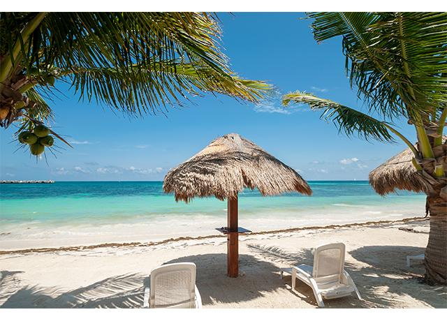 Palm trees and Palapas for shade on the beach - Palma Real, 1 BR Condo on Beach in Puerto Morelos - Puerto Morelos - rentals