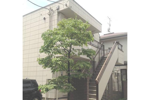 BUILDING - Cozy Apartment Near Shinjuku - Tokyo - rentals