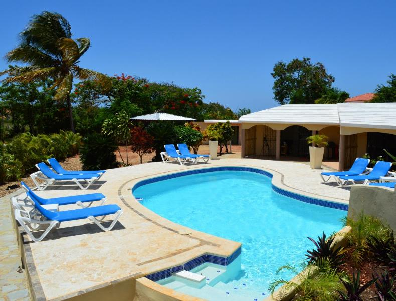 Sparkling clean pool!  Waterfall, loungers and pool toys.  Fun for everyone!! - NO HIDDEN FEES - SECLUDED OASIS MINUTES FROM BEACH - Cabarete - rentals
