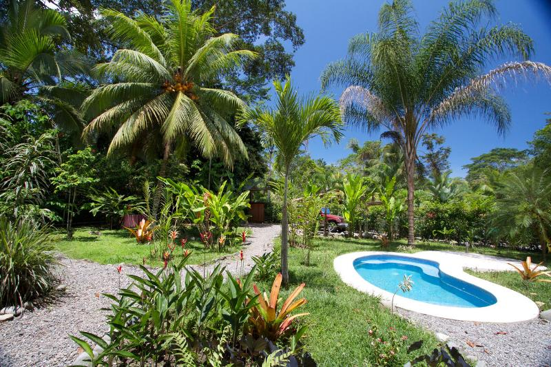 Plunge pool in your yard - Casa Carpe Diem - Punta Uva - rentals