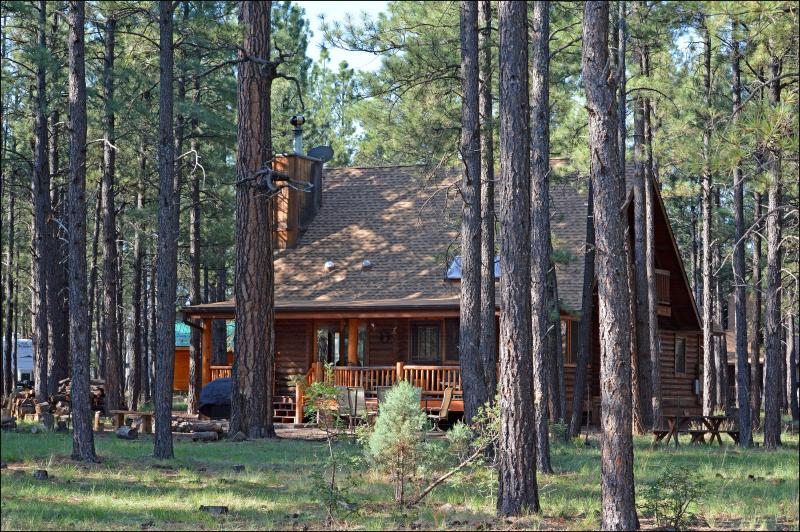 Cabin Back Deck and Patio from Forest - Log Cabin On National Forest - Pinetop - rentals