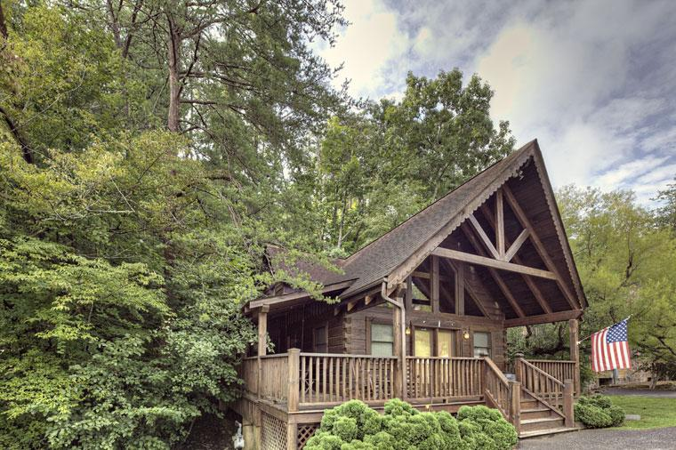 ER40 - THE BEAR PAUSE - Image 1 - Pigeon Forge - rentals