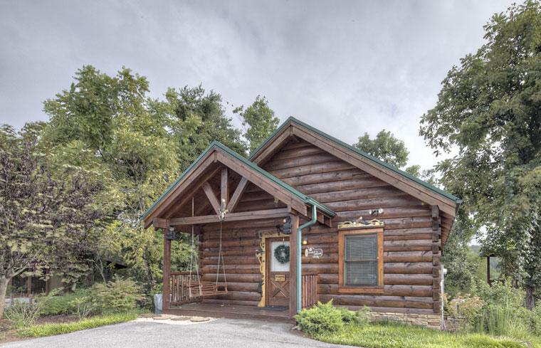 ERN818 - EAGLE'S DREAM - Image 1 - Pigeon Forge - rentals