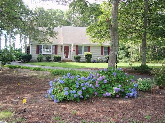 Front view of home - 11 Cranwood Road Harwich Cape Cod - Harwich - rentals
