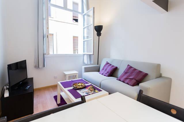 Cosy living room - Cosy Studio in Aix-en-Provence historical downtown - Aix-en-Provence - rentals