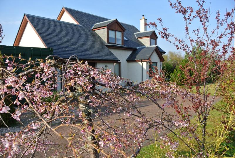 Luxury @ Sealladh  Breagh with mountain views - Luxury Self Catering Aviemore- Sealladh Breagh - Aviemore - rentals