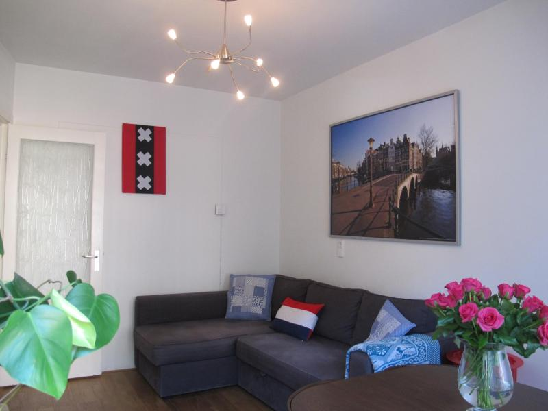 Living with sleeping sofa, free WIFI - 10minutes2center theme the Netherlands - Amsterdam - rentals