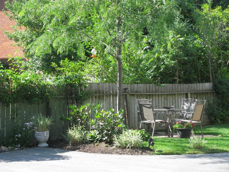 Your Own Backyard Space - COZY ONE BEDROOM APARTMENT AVAILABLE - Collingwood - rentals