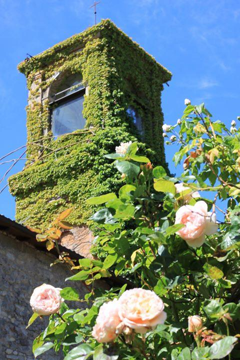 The Church tower - Chiesa ignano 1778 Country House in historic Borgo - Marzabotto - rentals