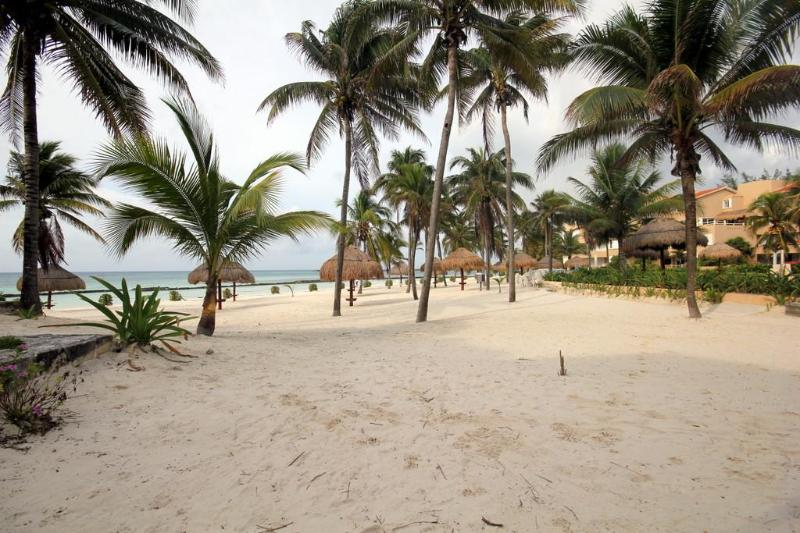 Beach, directly in front of condo - DIRECT SANDY BEACHFRONT 3 BR WIFI GRILL AMAZING!! - Puerto Aventuras - rentals