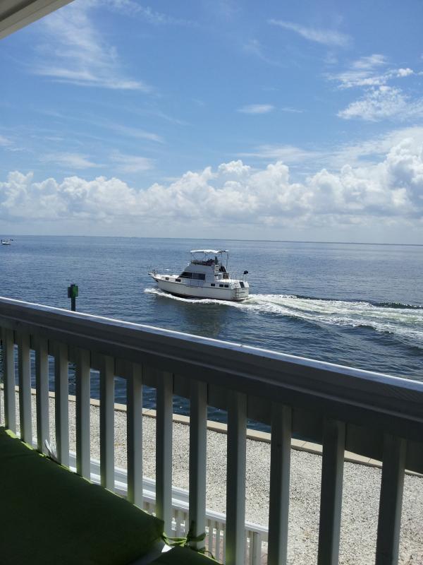 On The Bay - Waterside At Coquina Key Fl- Overlooking Tampa Bay - Saint Petersburg - rentals