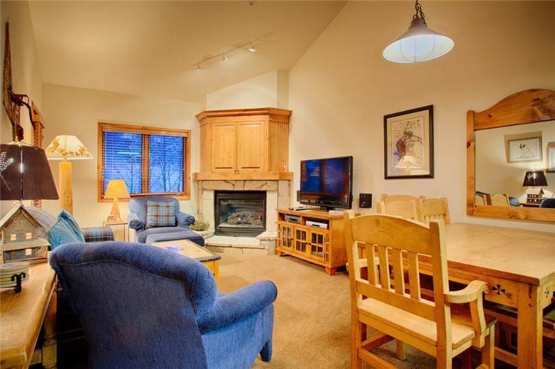 Riverbend Lodge 218 - Image 1 - Breckenridge - rentals