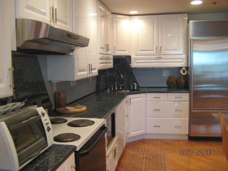 Kitchen with High End Appliances - Great Location Amazing Antiques 1 bedroom Apt - Boston - rentals