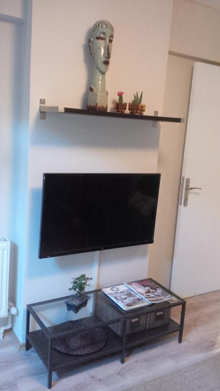The living room - Very Central Flat With Garden - Istanbul - rentals