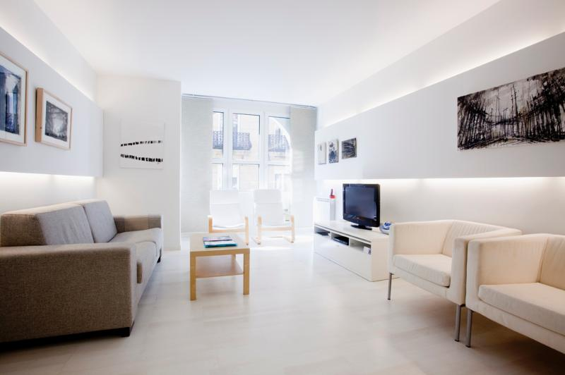 Living room - Gorgeus modern design apt near the beach WIFI - San Sebastian - Donostia - rentals