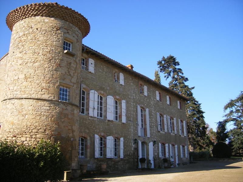Chateau de Montoussel - Hopkins gite at Chateau de Montoussel - Toulouse - rentals