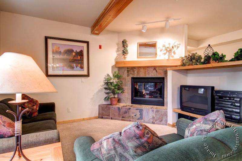 Twin Elk Townhomes B5 by Ski Country Resorts - Image 1 - Breckenridge - rentals