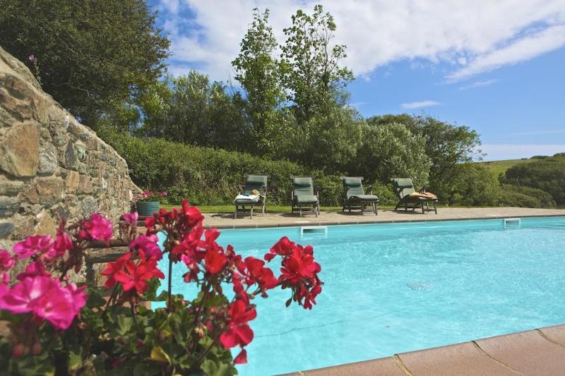 Broad Down Pool Web Versions 002 - Broad Downs Barn - Malborough - rentals