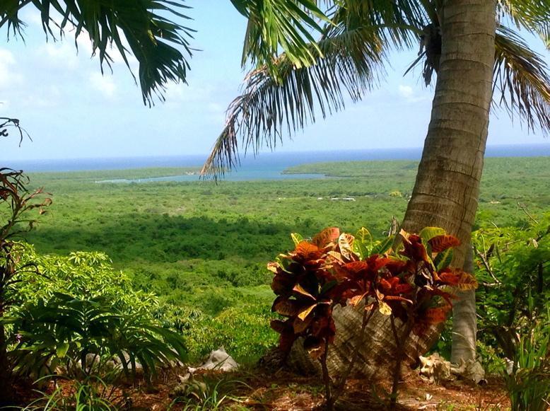 Seaclusion - Image 1 - Isla de Vieques - rentals