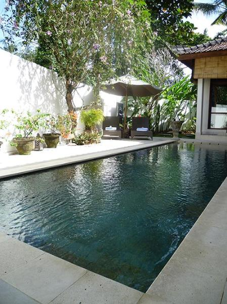 The pool and sun lounges. - Villa Bulan Mas - Peaceful 2bedroom villa in Ubud - Ubud - rentals