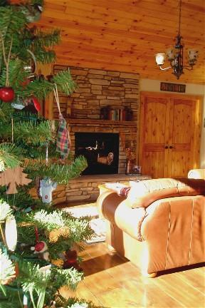 Christmas is memorable in this family size suite - Spacious 2 BR  rental at Sycamore Springs, Sedona - Sedona - rentals