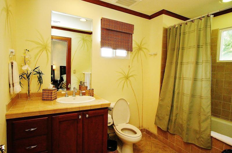 Veranda 3D, Los Sueños Resort - Image 1 - Herradura - rentals