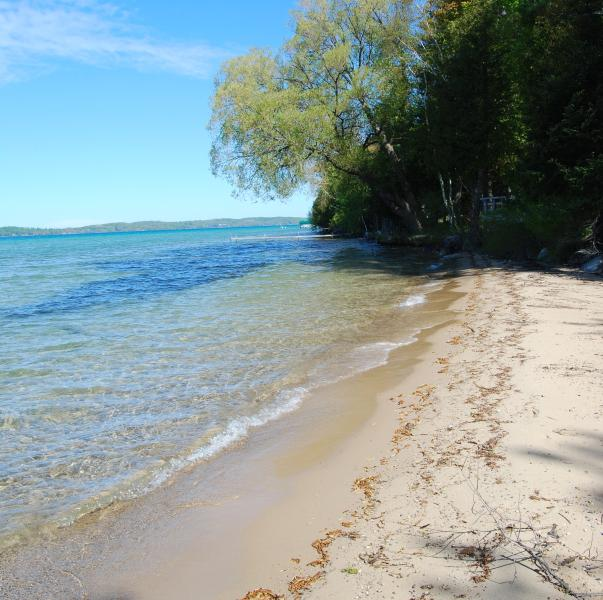 Our beach - Torch Lake Exceptional Lakefront Cottage - Alden - rentals