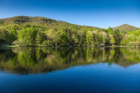 Peaceful setting over Lake - Lakeside Serenity - Ellijay GA - Ellijay - rentals