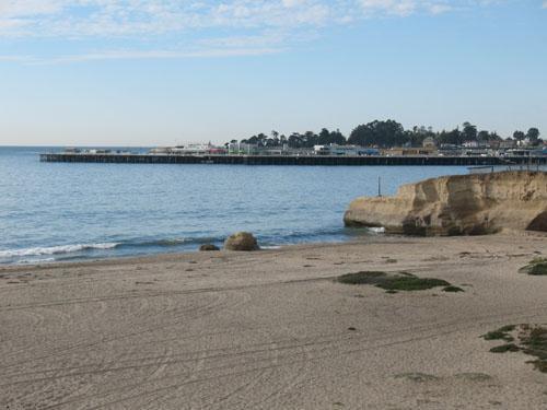 Castle Beach - 301/Seabright *WALK TO BEACH* - Santa Cruz - rentals