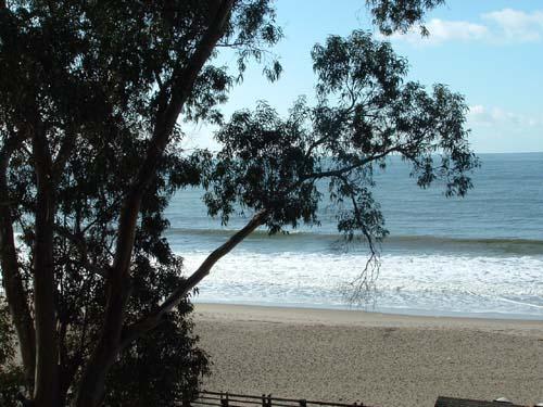 Beach Access just a short walk down the street path. - 2860/Modern Oasis *WALK TO BEACH* - Santa Cruz - rentals