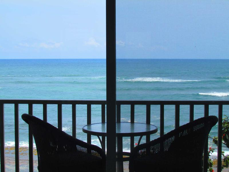 Your amazing view - Serene Oceanfront with Full Kitchen - Kapaa - rentals