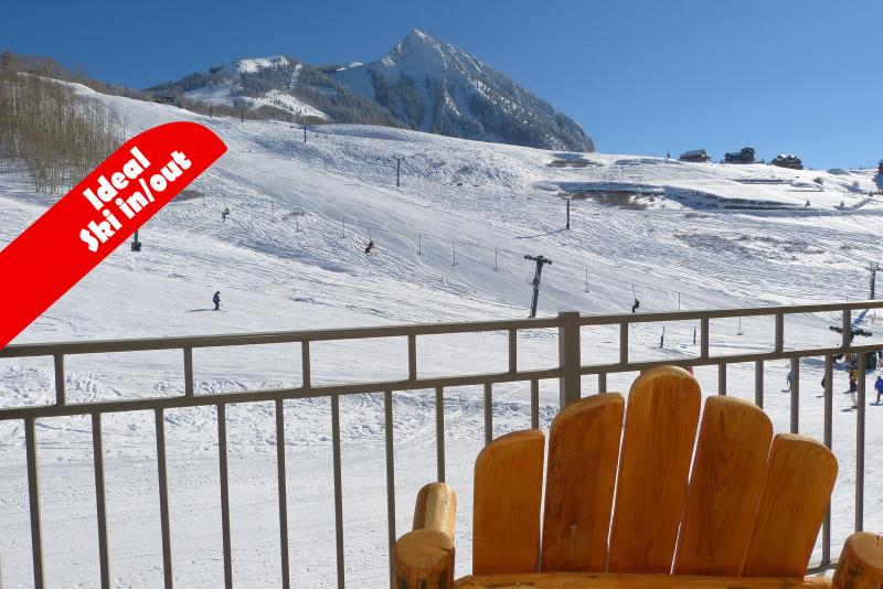 Sunny day from our deck. - Slopeside wildflowers, sleeps 2-8. Great for famil - Crested Butte - rentals