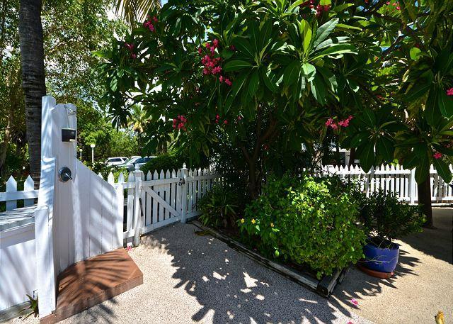 Playa Royale - Monthly Rental - Image 1 - Key West - rentals