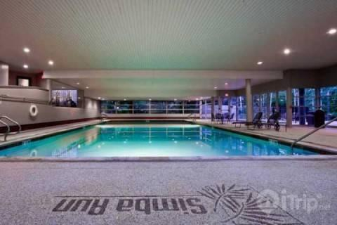 With the largest indoor heated swimming pool in Vail, Simba Run offers Excellent Value, Superior Amenities and World Class Skiing! - 2 King Suites~ Large Balcony~ Vail Mountain Views~ Epic Family Fun with Indoor Pool and Hot Tubs! - Vail - rentals