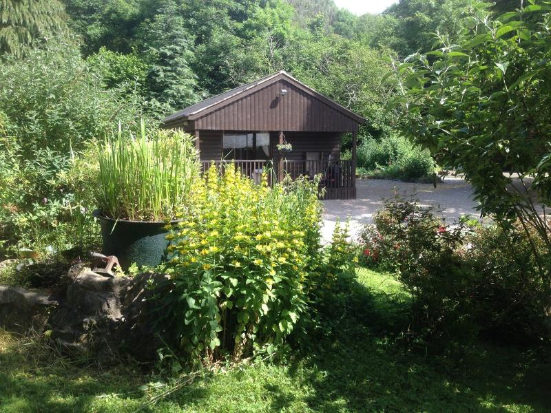 Sycamore Ranch - Penycoed Log Cabin Holidays with private hot tub - Oswestry - rentals
