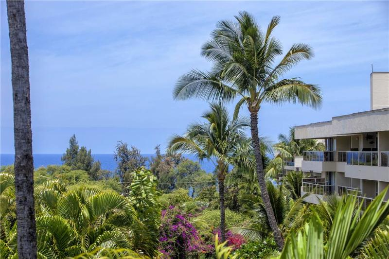 Maui Banyan #T-303 - Image 1 - Kihei - rentals