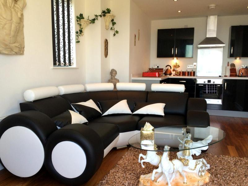 Penthouse living at its best.... Swansea uk - Image 1 - Swansea - rentals