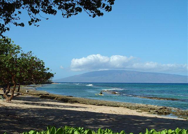 Hale Kai #102 - Your Home by the Sea in West Maui - Image 1 - Lahaina - rentals